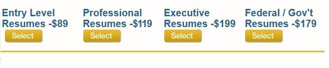 resumewritinggroup com reviews of the resume writing group